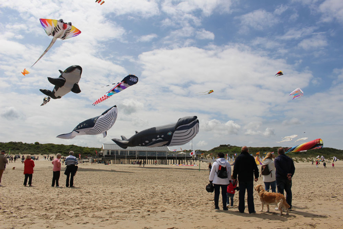 Pinkster vliegerfestival
